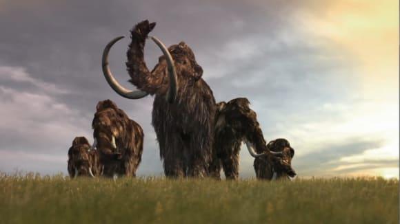 Mamuti, obři z doby ledové