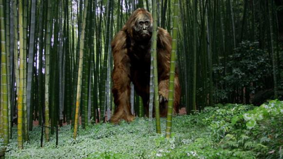 Gigantopithecus v pralese