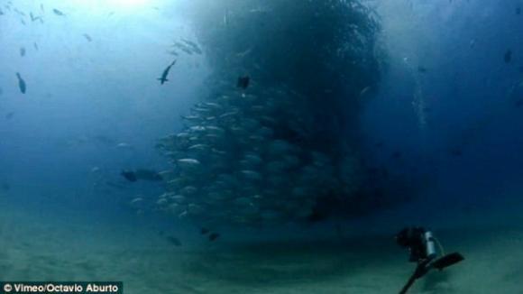 Podmořské tornádo málem pohltilo potápěče