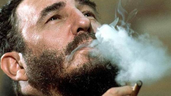 Typický Fidel