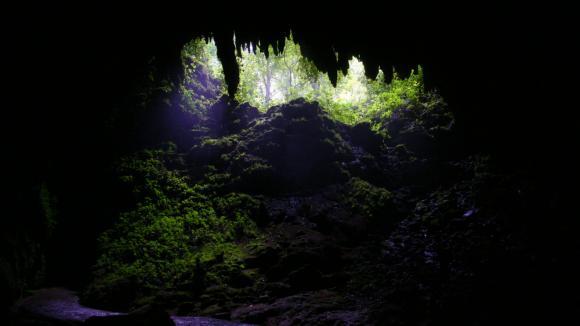 Jeskyně Cueva Clara na Portoriku