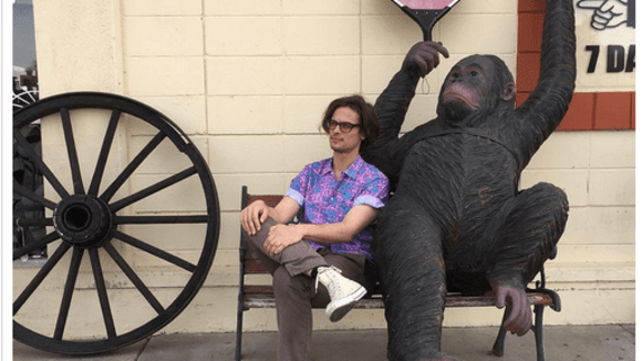 Matthew s opicí