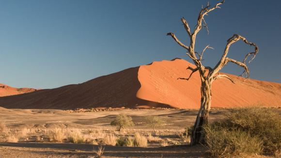 Poušť Namib s charakteristickými obřími dunami