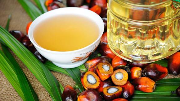 Podle lékařů není palmový olej zdraví neškodný...
