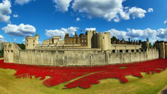 Každý z květů představuje oběť na životě z řad britských vojáků během první světové války, která začala v roce 1914 a skončila o čtyři roky později.