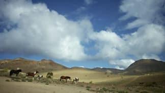 Přírodní krásy Divokého západu (1)