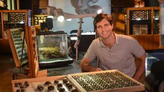 Hmyz: Zázrak přírodního inženýrství