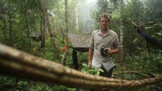 Nejdrsnější expedice s Jamesem Cracknellem