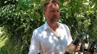Vinaři - přírodně sladká vína