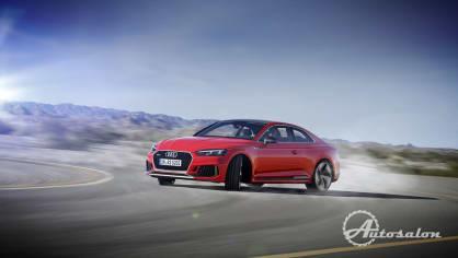 Audi RS5 20