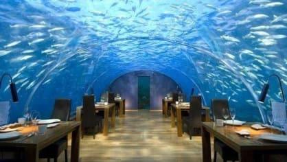 Restaurace Ithaa na Maledivách na první pohled vypadá jako romantické místo. Ne však pro klaustrofobiky a jedince, kteří se bojí žraloků