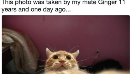 Kdo vyfotil první selfie? - Obrázek 14