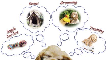 Zvířata také sní