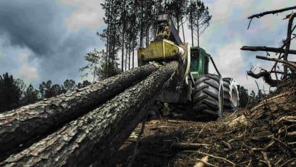 Působivá technika pro lesní těžbu. Většinou obouvá Nokiany. 11