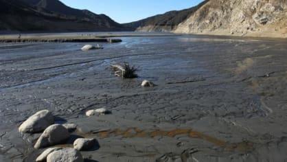 Kalifornský guvernér Jerry Brown vyhlásil mimořádný stav kvůli extrémnímu suchu, které Kalifornii sužuje v posledních dnech. Vyzval rovněž obyvatele, aby snížily spotřebu vody o 20 procent.