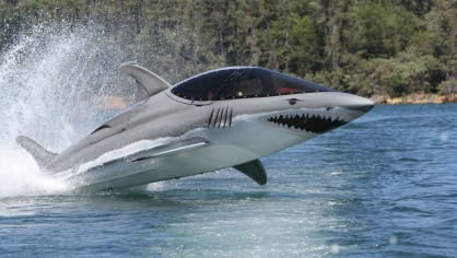 Člun, skútr, delfín? - Obrázek 2