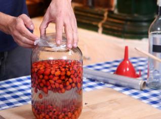 Fotografie k receptu Šípkový likér