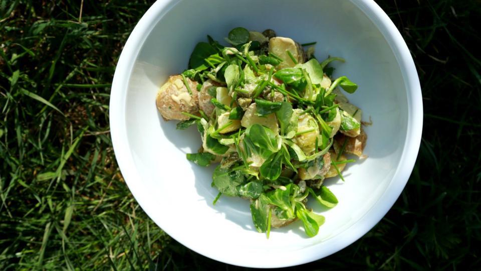 Salát z nových brambor a polníčku