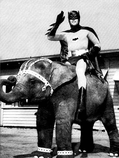 Batman na slonovi