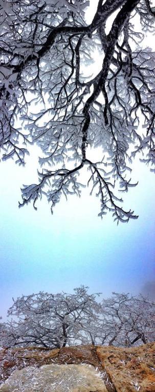 Grand Canyon a jeho nejkrásnější zimní fotografie - Obrázek 10