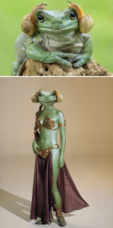 Žába s hlemýždi na hlavě