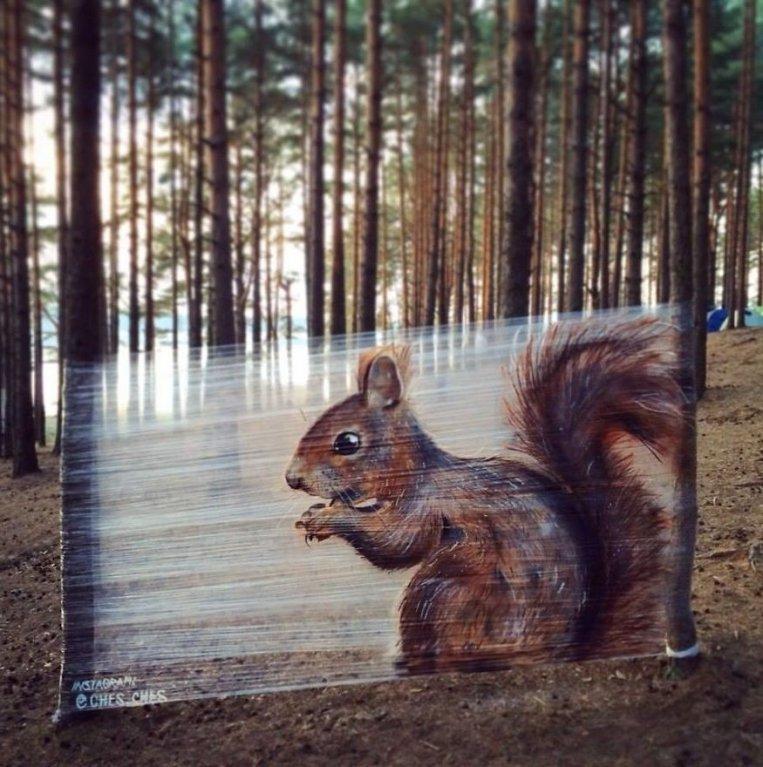 Úžasné lesní graffiti 6