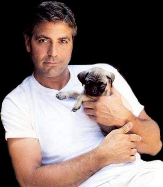 George Clooney neví, jak získat novou lásku