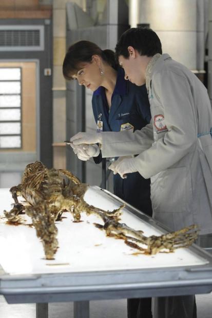 Sběratelé kostí VI (7) - Kráska v čokoládě - Obrázek 6