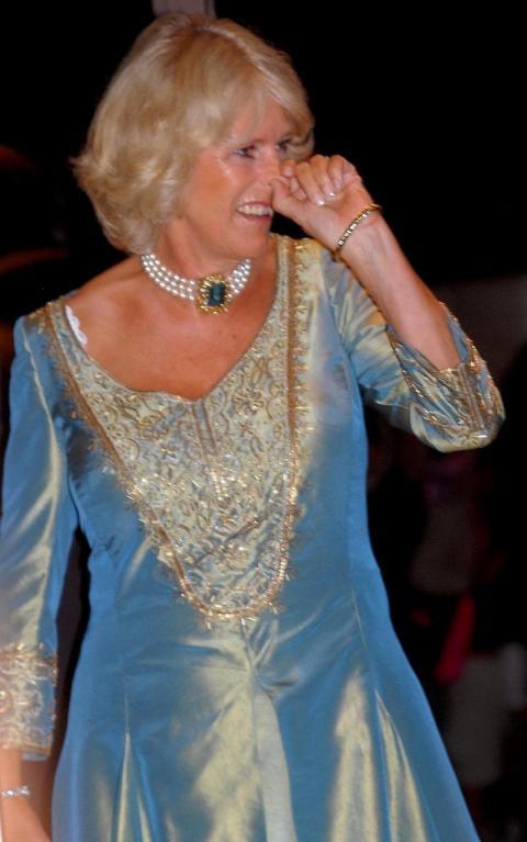I Camillu, vévodkyni z Cornwallu, občas svědí v nose...