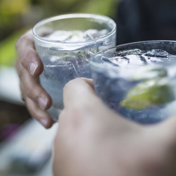Pijete gin a tonic?
