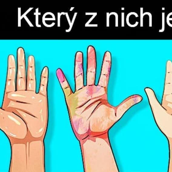 Poznáte podle rukou vraha? 2