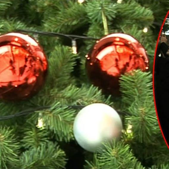 video VIP zprávy: První vánoční strom už svítí