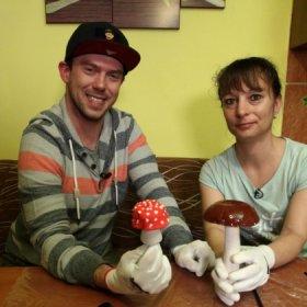 Jak si udělat sádrové houby? Prozradíme vpořadu Vychytávky Ládi Hrušky