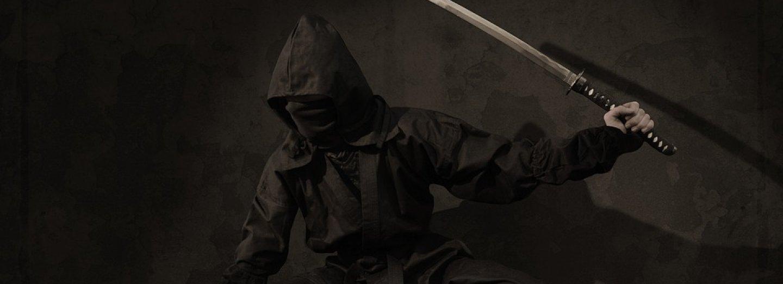 ilustrační foto- Ninja