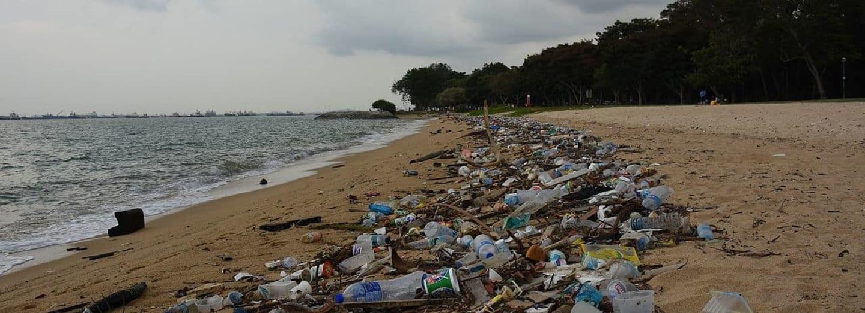 Pláž na pobřeží - plastový hnus na mnoha místech světa - Singapuru po jižní Itálii