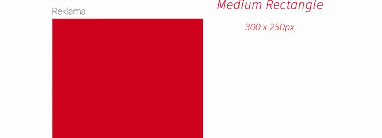 MediumRectangle - 05/2017