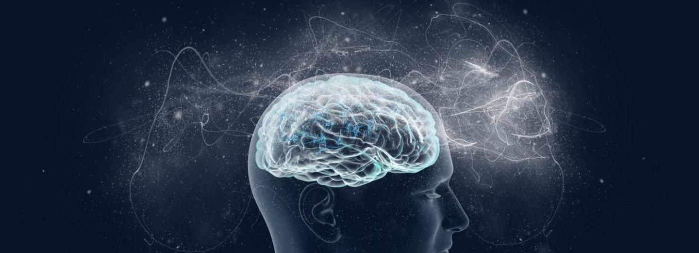 Vidíme očima, nebo mozkem?
