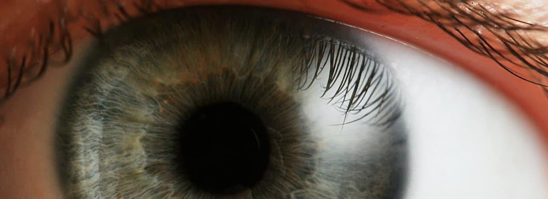 oko do duše okno - je tohle oko tetrachromatické?