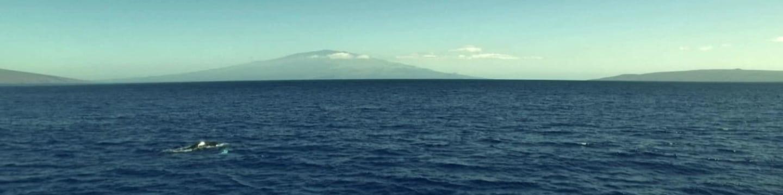 Velký Pacifik (1)