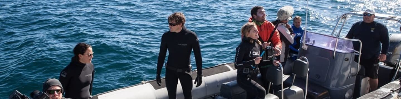Plavby Mořského dobrodruha