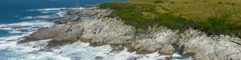 Podmořské poklady Nového Zélandu