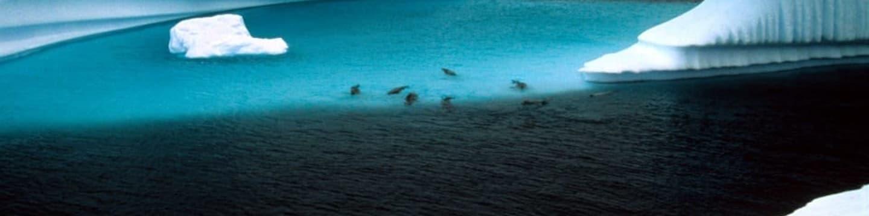 Křišťálový oceán