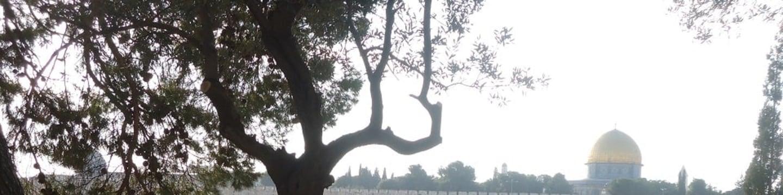 David Suchet: Po stopách sv. Pavla