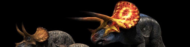 Dinosauři v novém světle