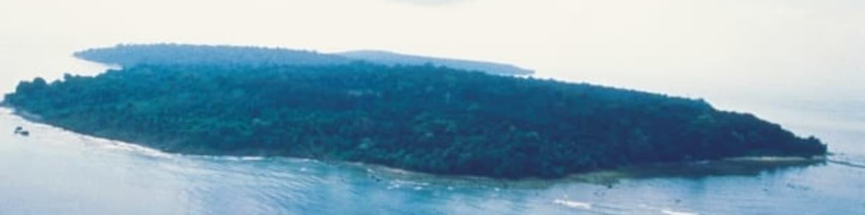Kdo přežije - Borneo - Obrázek 4
