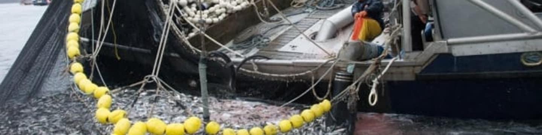 Mořští kovbojové: Honba za lososy