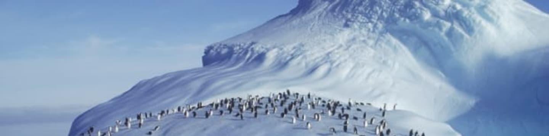 Za tučňáky na Antarktidu