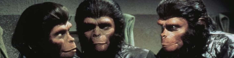 Život, svoboda a pronásledování na Planetě opic