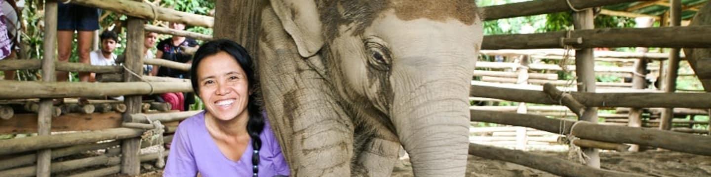 Zaříkávačka slonů