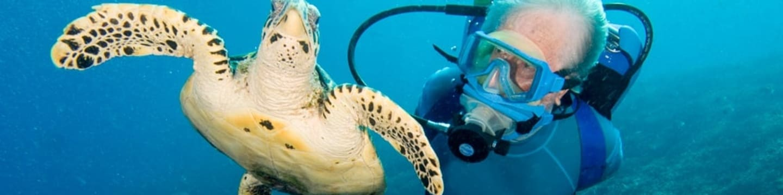 Jean-Michel Cousteau: Podmořské dobrodružství